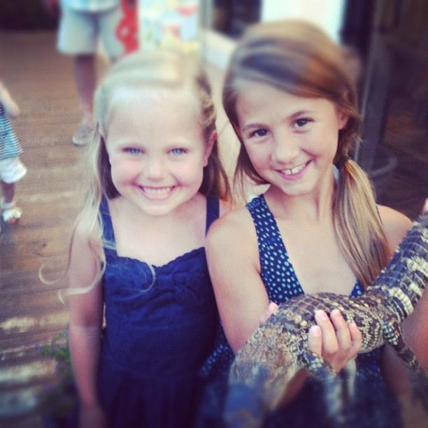 Alligator love.