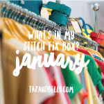Stitch Fix Selfies: January