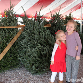 Finding Our Christmas Tree | Vlog