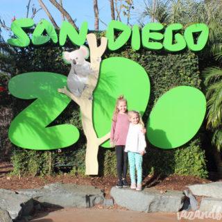 Travel Diary: San Diego Zoo   tazandbelly.com